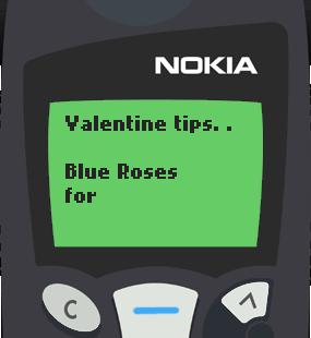 Text Message 2902: Valentine tips in Nokia 5110